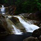 Josephine Falls by Ron  Wilson