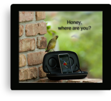 Honey, where are you? Canvas Print