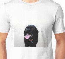 Please - pretty please! Unisex T-Shirt