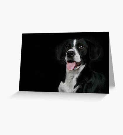 Bentley Greeting Card