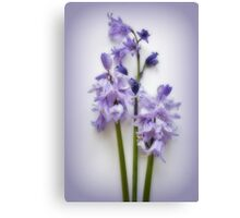 Magic Moments in Blue Canvas Print
