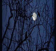 NIGHT by KristinaREI