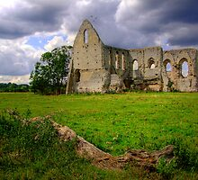 Newark Priory -  Pyford - HDR 1 by Colin  Williams Photography