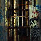 Last Light by Trish Woodford