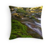 Sun Dappled Paradise - Barrington Tops NP, NSW Throw Pillow