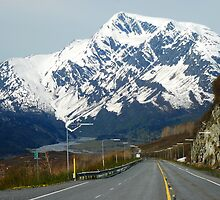 Road to Valdez by Joy & Rob Penney