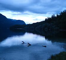 Lake Bohinj by RedFlavourArt