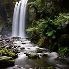Hopetoun Falls 1 by Paul Moore