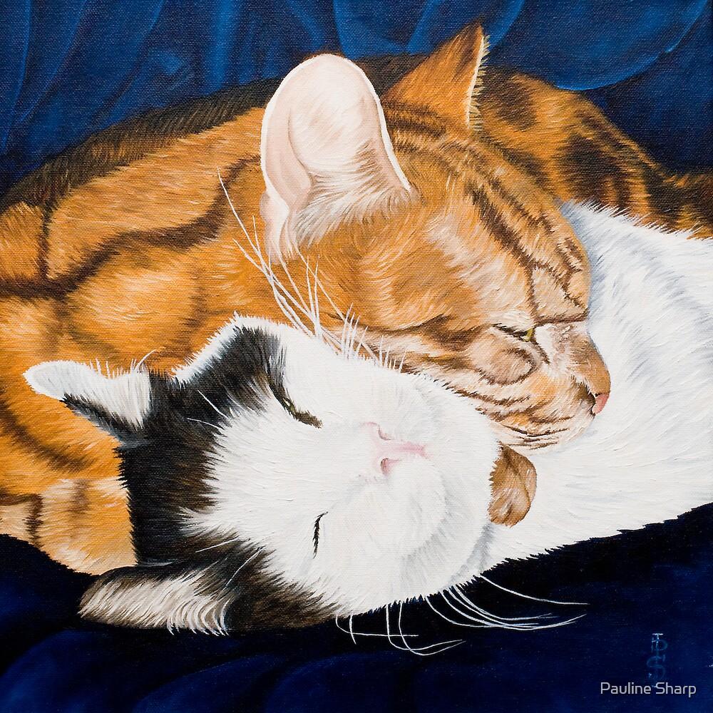 Peaceful sleep?-Jake and Jonah-Pet portrait by Pauline Sharp