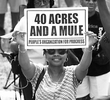 40 Acres and a Mule by Matsumoto