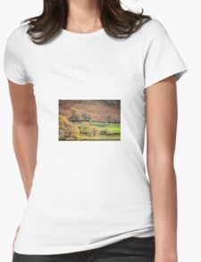 Old Barn Landscape Womens Fitted T-Shirt