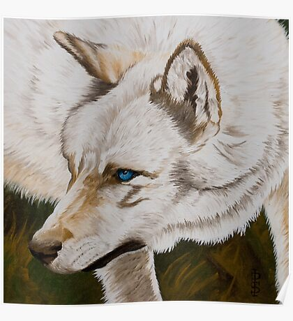 Old blue eyes Poster