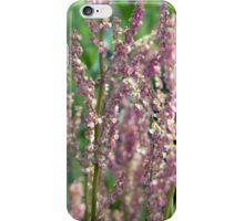 Garden Sorrell iPhone Case/Skin