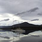 Huon Valley Tasmania by largo