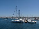 Alghero harbour by CiaoBella