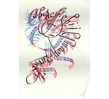 Calligradoodle  ( Alphabet ) Poster