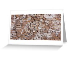 The Salt mines of the Incas in Sacred Valley close to Cuzco Peru Greeting Card
