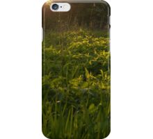 the last rays of the day iPhone Case/Skin