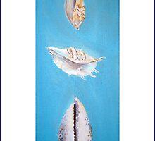 Three Shells by Shoshonan