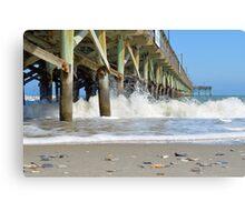 Sea Shells By The Sea Shore Canvas Print