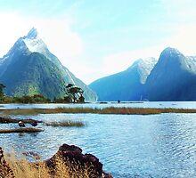 Milford Sound, New Zealand by davecorban