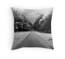 The Straight and Narrow Throw Pillow