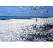 Seaoats  and Sea Photographic Print