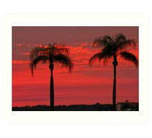 Twin Palm Delight Art Print