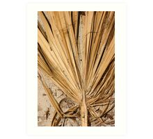 Palm Leaf in sand Art Print
