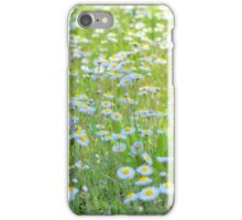 Daisies Gone Wild iPhone Case/Skin