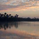 River Sunrise by barbz61