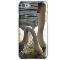 Feathery gracefulness - photograph iPhone Case/Skin