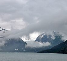 Burns Glacier & Portage Lake ~ Alaska by Barbara Burkhardt