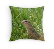 Ground Squirrel Throw Pillow