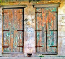 Doors in New Orleans by Delany Dean