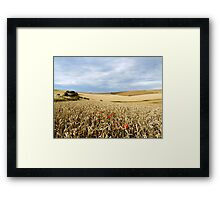 South Downs Gold Framed Print