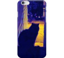 Cat at Night in the Old Neighborhood iPhone Case/Skin