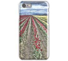 WHERE RED TULIPS MEET YELLOW iPhone Case/Skin