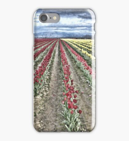 WHERE RED TULIPS MEET YELLOW iPhone Case/Skin