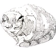 Annie's Cat by Roz McQuillan