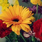 Spring Bouquet by Kathy Nairn