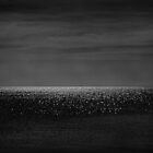 The night the stars fell to the sea by Cedric Canard