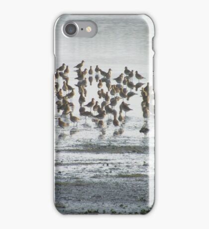 Plovers in the Mist iPhone Case/Skin