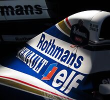Williams FW16 - Ayrton Senna by © Steve H Clark Photography