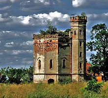 Watchtower  by Aleksandar Topalovic