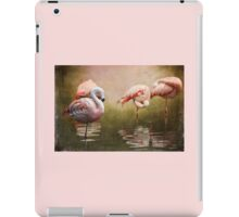Snooze Time iPad Case/Skin