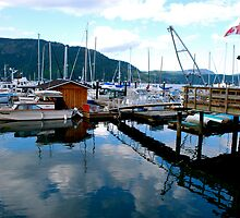 Summer Evening on Cowichan Bay by Carol Clifford