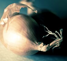 Onions by lupography