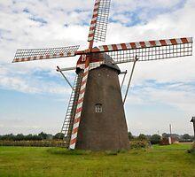Windmill by Jaime Pharr