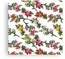 Blooming branches Canvas Print